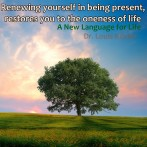 Renewing Yourself in Being Present, Restores You to the Oneness of Life